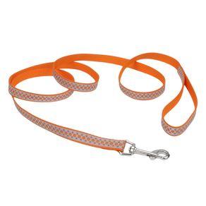 Collares-para-perro-Lazer-Brite-Puntos-Naranja-Correa-Large-1--Coastal-Pet-