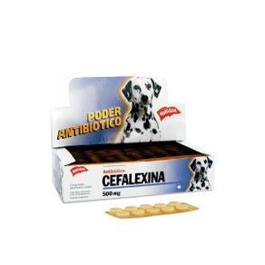 Antibiotico-Cefalexina-500Mg-50Comp-Holliday