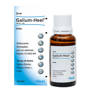 Homeopaticos-Galium-Heel-Ad-Us.-Vet.-Gotas-Frasco-X-30-Ml-Heel