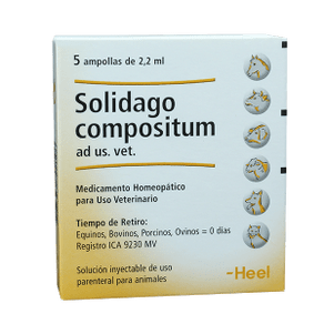 Homeopaticos-Solidago-Comp.-Ad-Us.-Vet.-Cj.-5-Ampollas-X-22-Ml-Heel