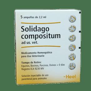 Homeopaticos-Solidago-Comp.-Ad-Us.-Vet.-Cj.-5-Ampollas-X-22-Ml-Heel