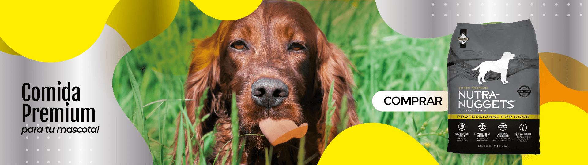 COMIDA PARA PERROS NUTRA NUGGETS  - promociones en comida para perro Agrocampo