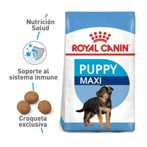 Alimento-Perro-ROYAL-CANIN-SHN-MAXI-PUPPY-15-KG