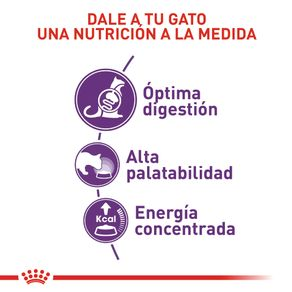 Alimento-para-gato-FHN-SENSIBLE-ROYAL-CANIN-adultos-