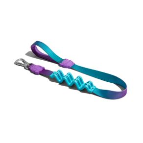 Collares-para-Perro-wave-ruff-leash-small-ZEE-DOG