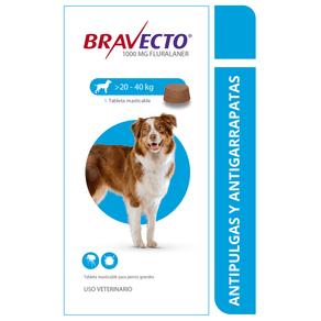 Antipulgas-para-perros-bravecto-precios