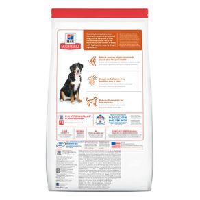 alimento-perro-c-adult-large-breed-lamb-rice-33lb