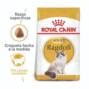 1comida-gato-roya-canin-ragdoll