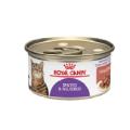 Alimento Húmedo Gatos