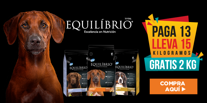 Banner Equilibrio - Mobile